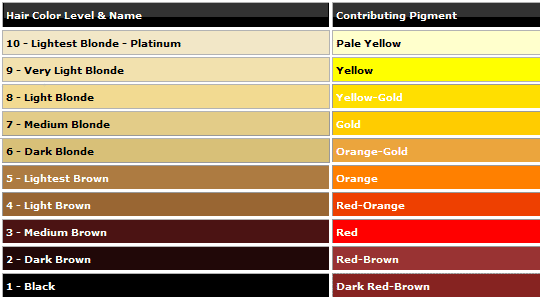 Hair Level And Pigment Chart